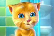 Konuşan Kedi 3