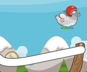Kuş Avla