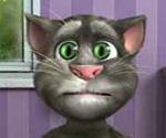 Konuşan Kedi