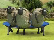 Koyun Shaun Yarışları