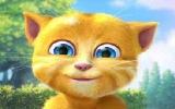 Konuşan Kedi Ginger