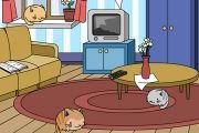 Oyuncu Kediler