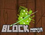 Block Ninja Oyunu