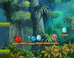 Ateş ve Su Orman Tapınağı Oyunu