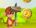 Orman Maymunu Koşusu