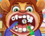 Çocuk Doktoru: Diş Hekimi